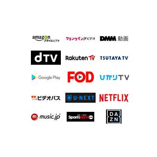 視聴頻度や使い方に合わせてVODが選べる!