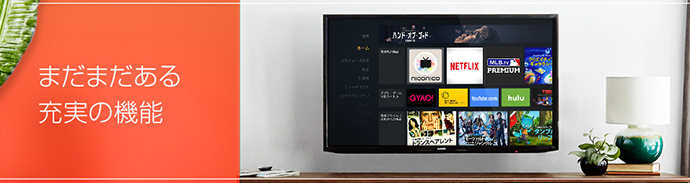 Fire TV・Fire TV Stickで楽しめるビデオオンデマンドサービスを比較