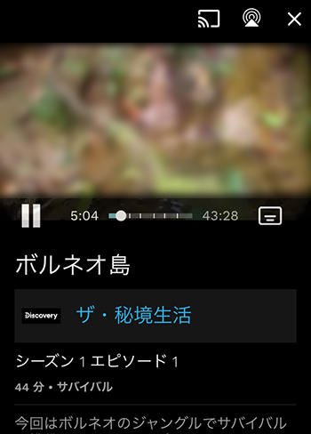 動画の再生画面