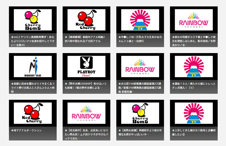 ひかりTVはアダルト專門チャンネルも楽しめる